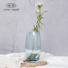 8750202-Jia Hao Jia Yi creative ice crack vase glass personality living room European ornaments simple home decoration water flower on JD