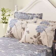 8750203-Sheng Wei bed products cotton pillow sets of cotton pillow sets of single loaded 48 * 74cm small beetles blue on JD