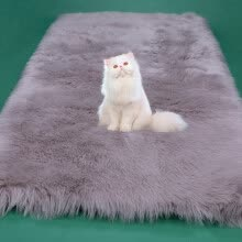 area-rugs-doormats-Fashion Long Faux Fur Artificial Skin Rectangle Fluffy Chair Seat Sofa Cover Carpet Mat Area Rug Living Bedroom Home Decoration on JD