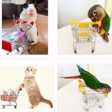 birds-fishes-other-small-animals-and-horses-New Arrival Funny Mini Bird Parrot Mouse Cat Toy Supermarket Shopping Cart Intelligence Growth on JD