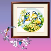-embroider DIY DMC Cross stitch,Sets For Embroidery kits  Three Blue Jays  factory direct sale on JD
